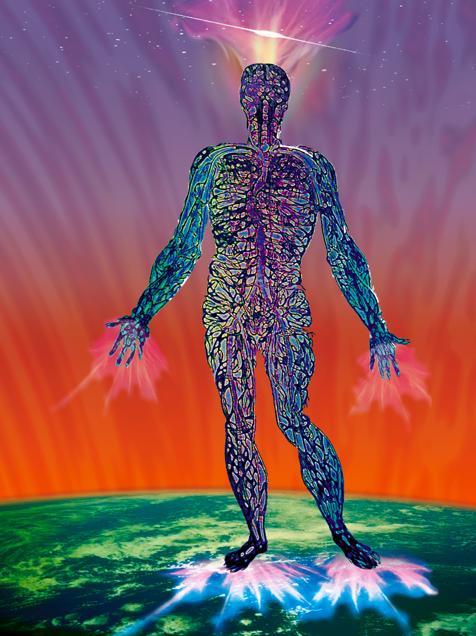 De mens als een holistisch geheel